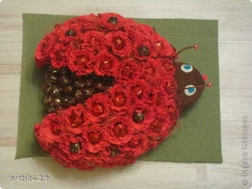 По просьбе подружки решила сделать Божью коровку . МК тут http://www.liveinternet.ru/users/lyutsiya/post175851553/  Вот правда у меня не так красиво получилось как в МК  Но для первого раза даже очень хорошо) фото 3