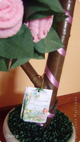 """Добрый день Страна! вот сколько не делаю топиарии, а вот от таких - салфеточных деревьев, восторга больше всего.... Мне сказали, что я ничего не понимаю.... ну да ладно, лишь бы оно радость приносило. Это дерево мне заказали кому-то на день рождения....Я уже делала подобное дерево его можно посмотреть тут   https://stranamasterov.ru/node/287110        , нужно было """"такое же"""". Ну вот готово... фото 2"""