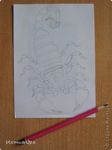 """У меня сын (9 лет) увлёкся коллекционированием фигурок скорпионов. И вот, я решила пополнить его коллекцию, нарисовав скорпиона в технике """"point-to-point"""". Получилось необычно, оригинально, да и сын остался доволен. Тем более, это может быть прекрасным подарком для тех, кто родился под созвездием этого знака. Хочу поделится секретами работы над картиной. фото 3"""