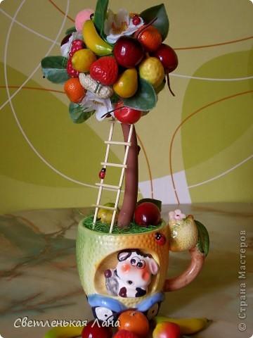 Приветствую всех жителей СМ!!! Весна пришла, а у меня фруктовый БУМ!!! Наверное, потому что нехватка витаминов!!!))) фото 3