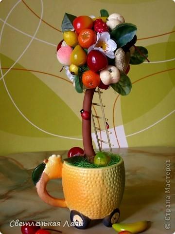 Приветствую всех жителей СМ!!! Весна пришла, а у меня фруктовый БУМ!!! Наверное, потому что нехватка витаминов!!!))) фото 4