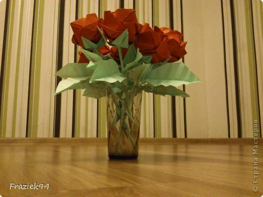 Róże фото 1