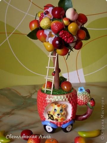 Приветствую всех жителей СМ!!! Весна пришла, а у меня фруктовый БУМ!!! Наверное, потому что нехватка витаминов!!!))) фото 5