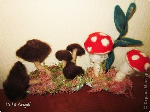 Навалялись грибочки.Декор для подоконников.Классно смотрятся среди цветочных кашпо =) фото 1