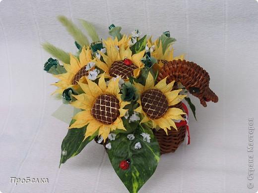 Вот такой торт-шкатулка с подсолнухами заказали. Сделала. Цветы по МК от ЕМ. Спасибо за опыт и подсказки. фото 6