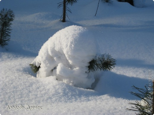 Это чудо я встретила в заснеженном зимнем лесу.Мужичек - снеговичек с радостью и почтением встречает приход весны!