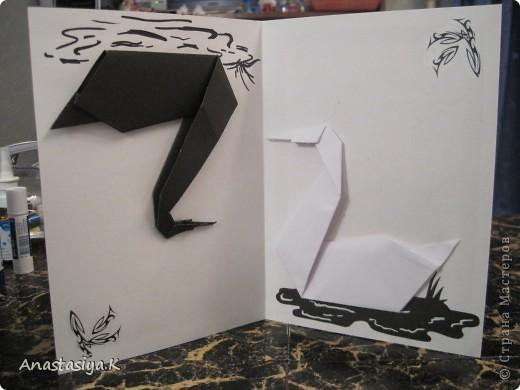 Одна сторона открытки - Белый лебедь фото 2
