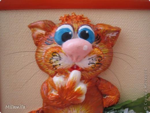 И третий котик с ромашкой фото 2