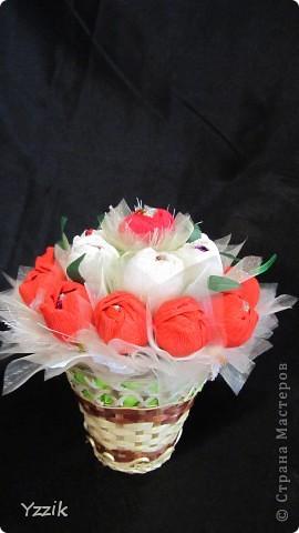 Выношу на ваш суд свои первые весенние цветы, буду рада любым комментариям  фото 5