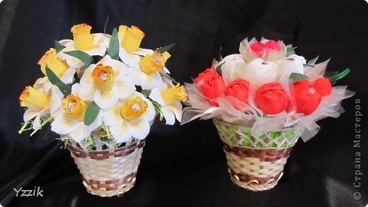 Выношу на ваш суд свои первые весенние цветы, буду рада любым комментариям  фото 1