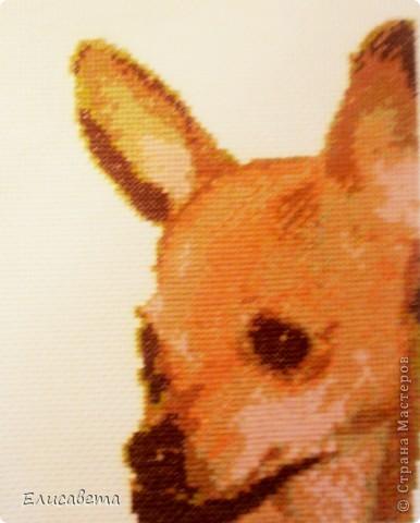 Вот такую картинку подарила Тете в память о ее любимце... фото 1