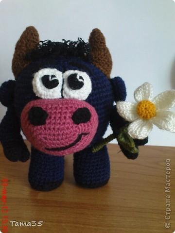 Подарок для тех кто родился в год быка. фото 1