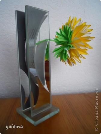 желтая красавица фото 2