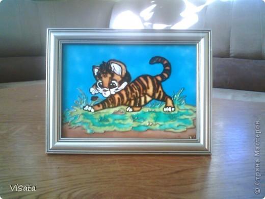 любопытный тигренок