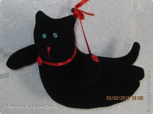 """Здравствуйте всем! Заболела и я котами...вот мой первый кот...""""летающий кот""""...сшила его из черного драпа, набила холофайбером...глаза зеленые бусины, но на фото голубые...искажается цвет!  фото 1"""