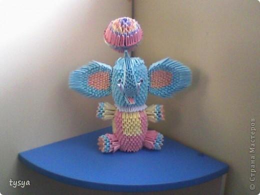 слон циркач фото 1