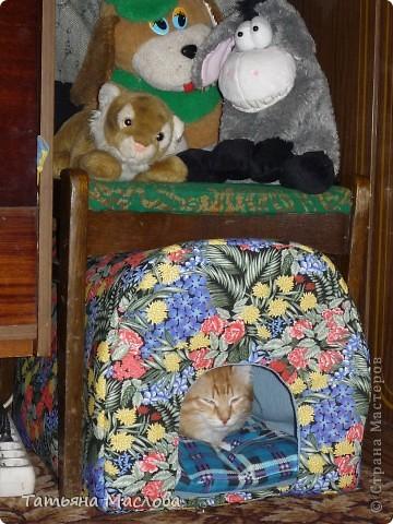 Вот такой домик для кота сделала пару дней назад. фото 1