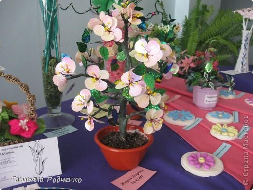 """С приходом весны, СТРАНА!!! Предлагаю вашему вниманию фоторепортаж с выставки в нашей школе. Мы её назвали """"Цветочная феерия"""", и это справедливо, ведь скоро Женский день))) фото 10"""