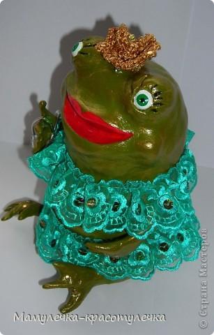 Царевна-лягушка фото 4