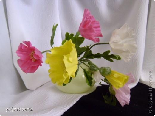 Ещё один подарок на 8 марта-маки. фото 6