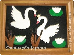 Лебединная сказка фото 3