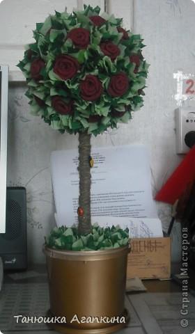 Еще одно деревце счастья фото 5