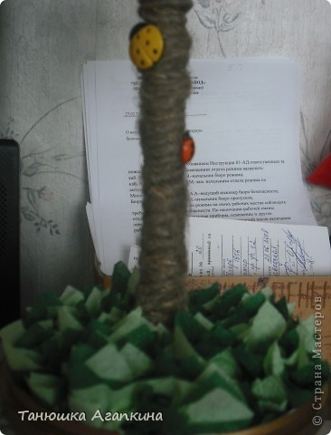 Еще одно деревце счастья фото 2