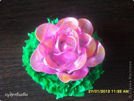 розы из пластмассовых,одноразовых роз. фото 3