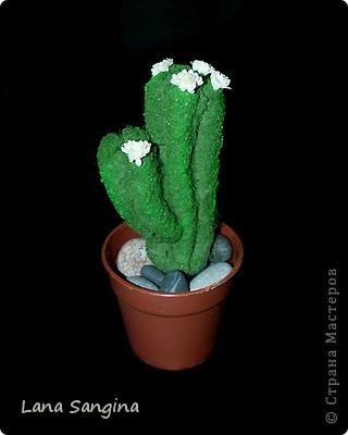 Материалы: синтепон, нитки, гуашь, ПВА, искусственные цветы.  Моей фантазии хватило на два вида кактусов: продолговатый и круглый. Начальные стадии изготовления отличаются, поэтому рассмотрим два варианта с общим финалом. фото 1