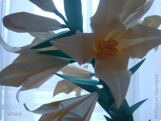 Всем добрый вечер! Цветы лилии - это цветок классического ириса https://stranamasterov.ru/node/13042 Концы лепестков я закрутила. Для цветка я брала квадраты со стороной 15 см  фото 2