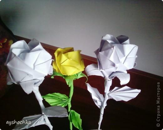 Розы Кавасаки.... Около часа пыталась ону розочку сделать, а как научилась, показался таким легким))))) фото 2