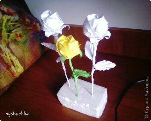 Розы Кавасаки.... Около часа пыталась ону розочку сделать, а как научилась, показался таким легким))))) фото 3