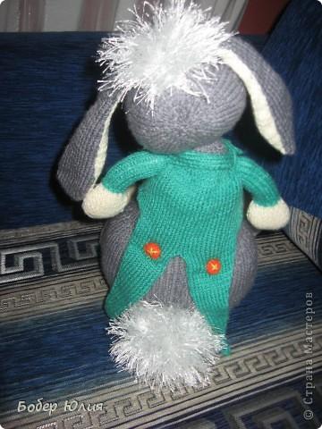 Мартовский заяц фото 2