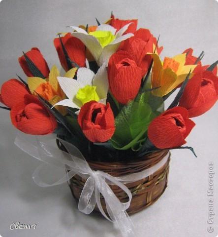 Цветочная оранжерея к 8 Марта!!  Приглашаю на прогулку!! фото 10