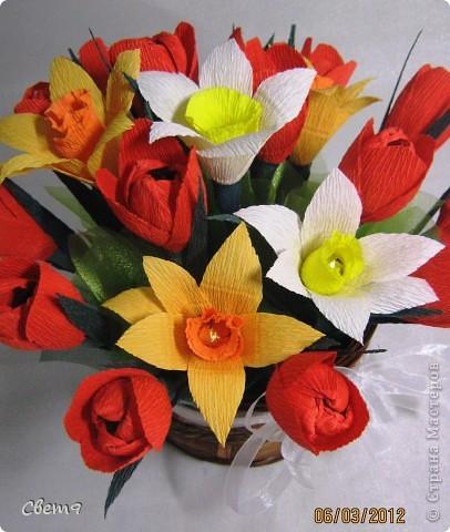 Цветочная оранжерея к 8 Марта!!  Приглашаю на прогулку!! фото 11