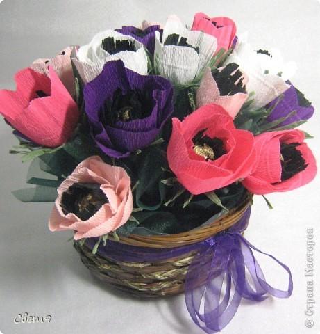 Цветочная оранжерея к 8 Марта!!  Приглашаю на прогулку!! фото 16
