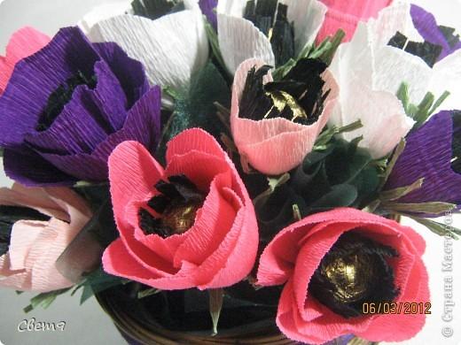 Цветочная оранжерея к 8 Марта!!  Приглашаю на прогулку!! фото 17