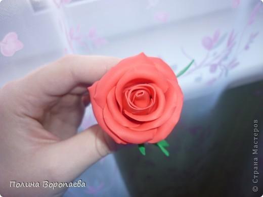 """Первый """"серьезный"""" цветок :) фото 2"""