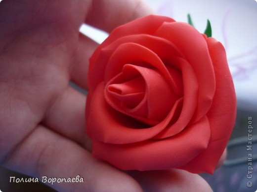 """Первый """"серьезный"""" цветок :) фото 5"""