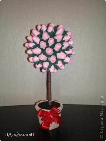 Моё первое розовое деревце=) фото 1