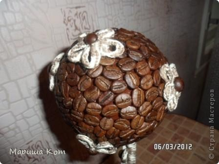 Вот и у меня выросло кофейное дерево. Делала первый раз, строго не судите. фото 3
