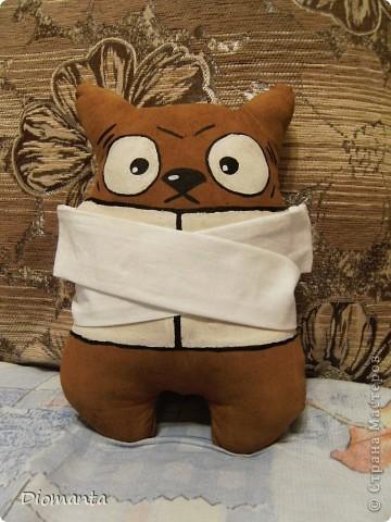 Кот в смирительной рубашке.  фото 1