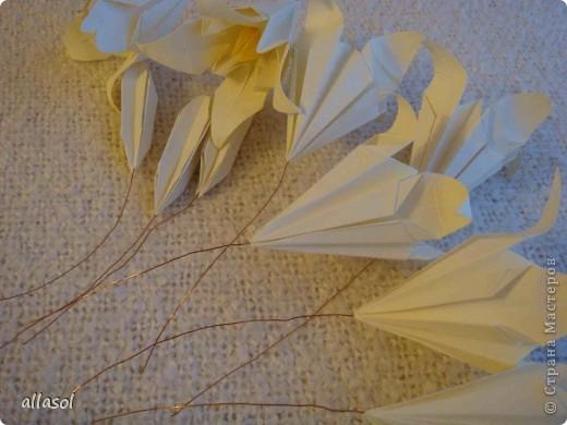 Всем добрый вечер! Цветы лилии - это цветок классического ириса https://stranamasterov.ru/node/13042 Концы лепестков я закрутила. Для цветка я брала квадраты со стороной 15 см  фото 14