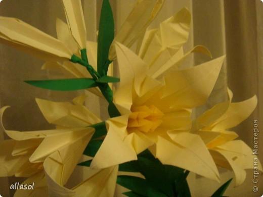 Всем добрый вечер! Цветы лилии - это цветок классического ириса https://stranamasterov.ru/node/13042 Концы лепестков я закрутила. Для цветка я брала квадраты со стороной 15 см  фото 4