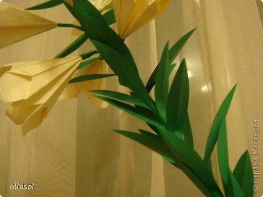 Всем добрый вечер! Цветы лилии - это цветок классического ириса https://stranamasterov.ru/node/13042 Концы лепестков я закрутила. Для цветка я брала квадраты со стороной 15 см  фото 5