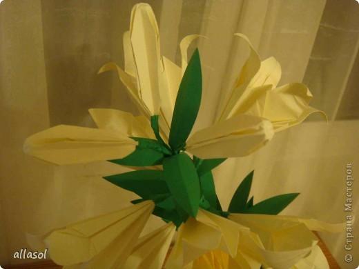 Всем добрый вечер! Цветы лилии - это цветок классического ириса https://stranamasterov.ru/node/13042 Концы лепестков я закрутила. Для цветка я брала квадраты со стороной 15 см  фото 6