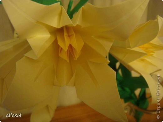Всем добрый вечер! Цветы лилии - это цветок классического ириса https://stranamasterov.ru/node/13042 Концы лепестков я закрутила. Для цветка я брала квадраты со стороной 15 см  фото 7