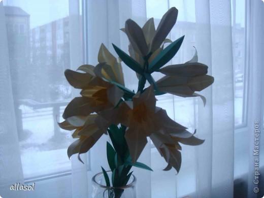 Всем добрый вечер! Цветы лилии - это цветок классического ириса https://stranamasterov.ru/node/13042 Концы лепестков я закрутила. Для цветка я брала квадраты со стороной 15 см  фото 15
