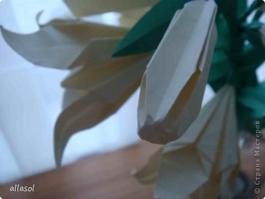 Всем добрый вечер! Цветы лилии - это цветок классического ириса https://stranamasterov.ru/node/13042 Концы лепестков я закрутила. Для цветка я брала квадраты со стороной 15 см  фото 3