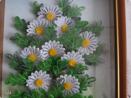 У Ольги К есть очень красивая картина с ромашками. Захотелось сотворить что-то подобное. Картину подарила свекрови на день рождения. фото 2